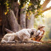 Мальчик с большой собакой