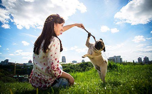 Девушка играет с мопсом в парке