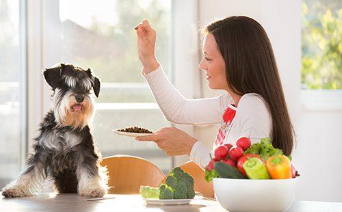 Женщина кормит собаку за кухонным столом