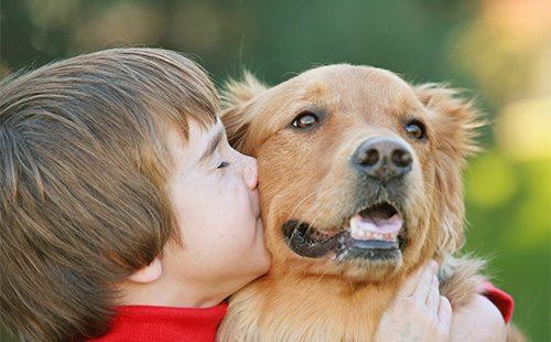Мальчик обнимает рыжего пса
